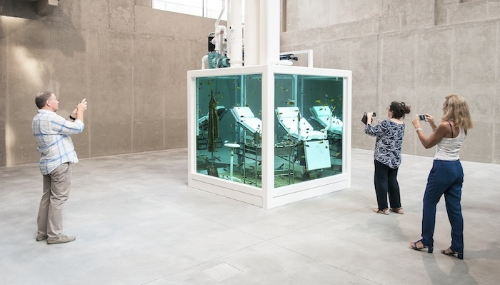 Le Guide VICE de l'Art contemporain