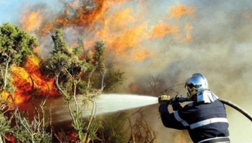 M'diq: décès d'une personne dans l'opération d'extinction d'un feu de forêt