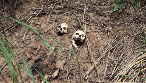 RDC: 390 miliciens et 124 forces de l'ordre tués depuis mars au Kasaï