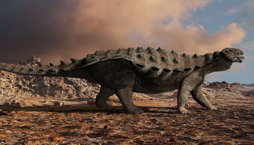 Un fossile de dinosaure en parfait état