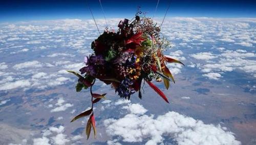 Un artiste japonais envoie des bouquets dans l'espace