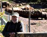En Croatie, un centre pour secourir les ours orphelins ou blessés