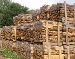 Vague de froid: le bois de chauffage atteint le record de 1.500 dirhams la tonne