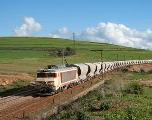 Tanger Med: 6 morts et 14 blessés dans une collision entre un train et un véhicule