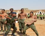 Sahara: le Polisario diffuse des photos d'entraînements