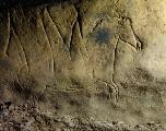 Une grotte avec un décor paléolithique exceptionnel découverte en Catalogne