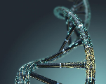 Les premiers génomes artificiels humains créés par IA