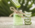 Aloe vera : Un ingrédient précieux pour votre peau