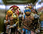 Seth Rogen annonce la sortie de son film Tortues Ninja pour août 2023