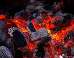Aïd Al Adha : Attention aux risques d'intoxication due au charbon