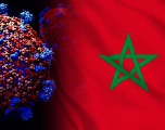 Maroc: 1.702 nouveaux cas Covid-19 avec 31 décès en 24H