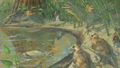 Un oiseau fossilisé découvert avec en lui, un oeuf