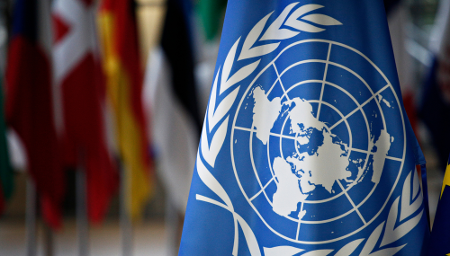 """""""Verified"""": la nouvelle initiative lancée par l'ONU pour lutter contre la désinformation"""