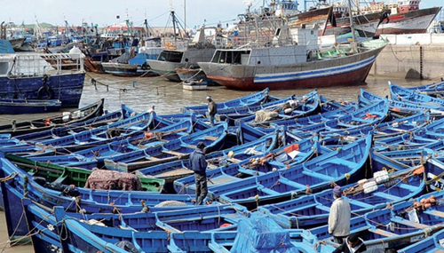 Port d'Essaouira: Les débarquements de la pêche côtière et artisanale explosent au premier trimestre