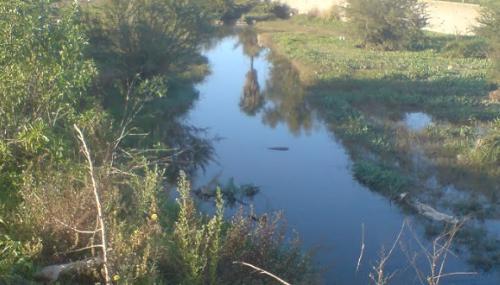 Les eaux de l'Oued Bouskoura désormais décolorées et limpides, selon Lydec