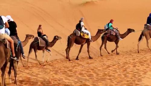 DEPF : Les recettes touristiques chutent de 53,8% en 2020
