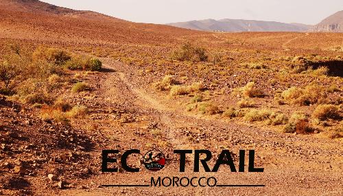 Ouarzazate : 7ème édition de l'