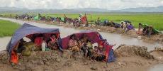 Nouvelles preuves de «crimes contre l'humanité» de l'armée birmane contre les Rohingya