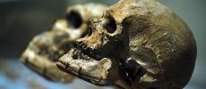 Vidéo. Sur les traces du plus vieux Homo sapiens du monde, découvert au Maroc