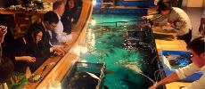 Un restaurant new-yorkais propose de pêcher son poisson du dîner