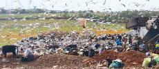 Médiouna: la plus grande décharge du Maroc fermée fin avril prochain