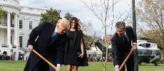 PHOTOS. Quand Emmanuel Macron et Donald Trump plantent un arbre dans les jardins de la Maison Blanch