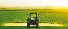 Campagne agricole 2017-2018 : Une récolte record de 98,2 millions qx annoncée