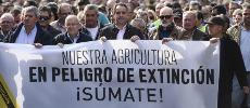 L'ASMEX dénonce le blocage des exportations marocaines en Espagne