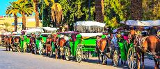 Les recettes touristiques en baisse de 57,7% à fin novembre