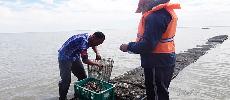 Les notables de la région de Dakhla à l'affût de l'or bleu de l'aquaculture
