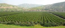 Comment l'agriculture a fait preuve de résilience en 2020